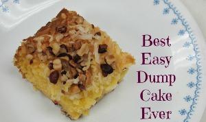 Best Easy Dump Cake Ever