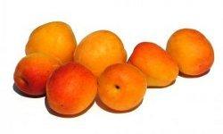 Apple-Apricot Pork Chops