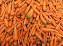 Carrot-Peanut Butter Cookies