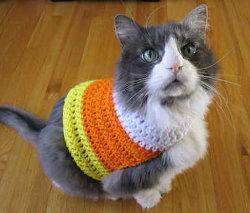 Crochet Candy Corn Pet Sweater
