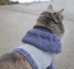 Knit Cat Hoodie