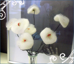 White Winter Flowers