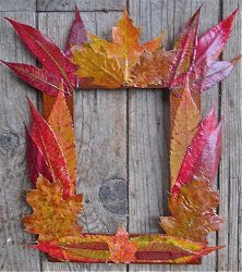 Fall Foliage Frames