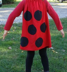 Quick and Easy Ladybug Costume