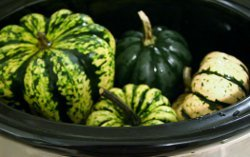 How to Cook Squash in the Slow Cooker