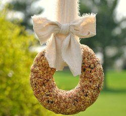 Basic Birdseed Wreath
