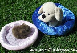 15 Minute Pet Bed Tutorial