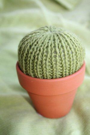 Knitting Pattern Pin Cushion : Pincushion Cactus AllFreeKnitting.com