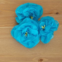 Blossoming Paper Flowers
