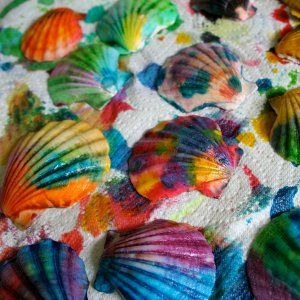 Pretty Painted Seashells