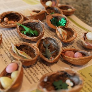 Walnut Shell Treasure Hunt