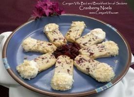 Cranberry Noel Cookies
