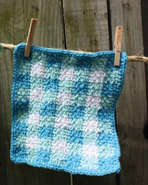 Aunt Bees Gingham Dishcloth