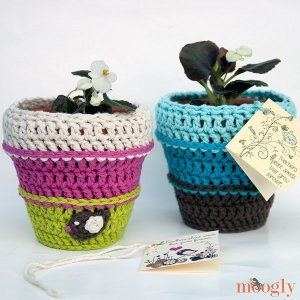 Everlasting Flower Pot Cozy