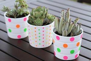 DIY Dot Pots