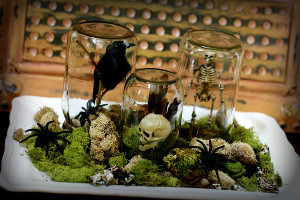 Haunted Halloween Terrariums