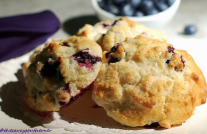 Simple Blueberry Spoon Biscuits