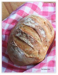 40-Cent No-Knead Bread