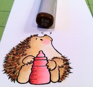 Creative Colored Hedgehog