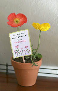 Printable Seed Packet Valentines