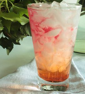 Sippable Seabreeze Drink
