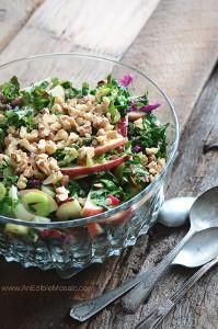 Apple-Walnut-Rainbow-Chard-Salad