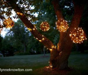 Glowing Grapevine Orbs