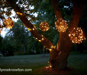 Glowing Grapevine Orbs
