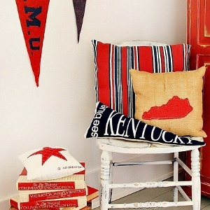 Team Pride DIY Home Decor Pillows