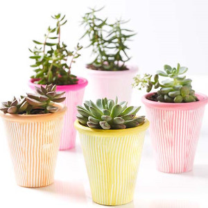 Wonderfully Springllike Terra Cotta Pots