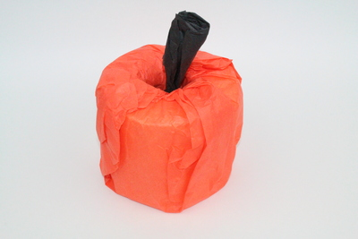 60-Second Toilet Paper Pumpkin