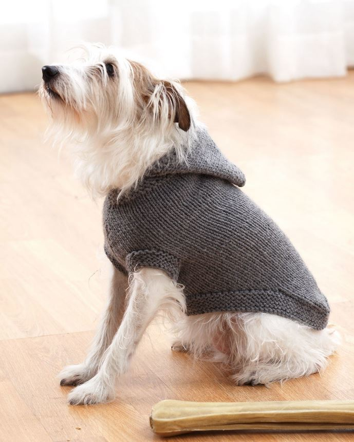 Asombroso Knitted Dog Sweater Pattern Bosquejo - Manta de Tejer ...