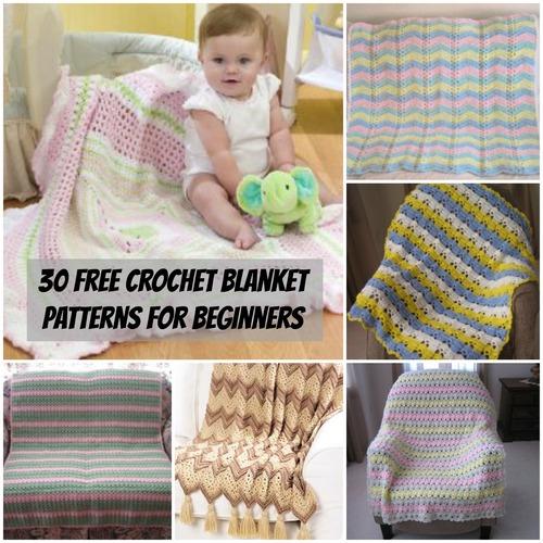 40+ Free Crochet Blanket Patterns for Beginners ...