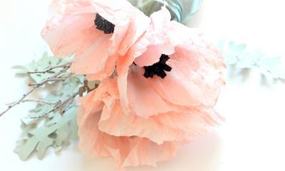 Crepe Paper Anemones