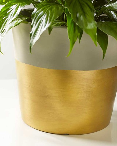 http://d2droglu4qf8st.cloudfront.net/2015/05/219338/Dipped-in-Gold-Planter_Large400_ID-981958.jpg?v=981958