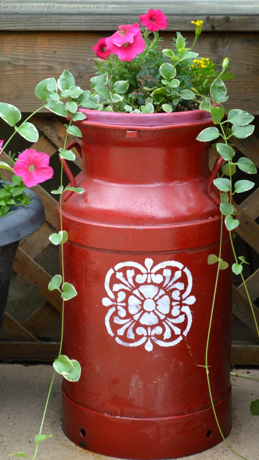 Antique Milk Can Vintage Milk Can Old Milk Cans Milk Jugs Milk Can Decor Painted Milk Cans Garden Fun Garden Planters Planter Ideas Forward decorating using old milk cans.