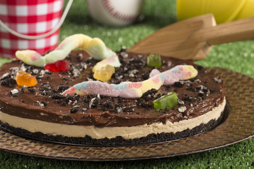 Chocolate Peanut Butter Dirt Cake EverydayDiabeticRecipescom