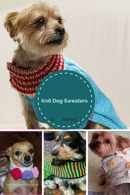 Knitting for Pets: 22 Knit Dog Sweaters AllFreeKnitting.com