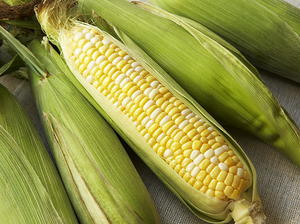 Corn on the Cob with Flavored Butters