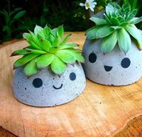 http://d2droglu4qf8st.cloudfront.net/2016/03/274020/Cute-DIY-Concrete-Planters_Small_ID-1576270.jpg?v=1576270