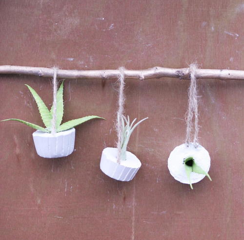 Summer Air Plant Ornaments