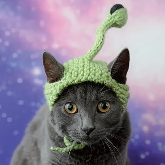 http://d2droglu4qf8st.cloudfront.net/2016/06/285095/Alien-Cat-Knit-Hat_Large600_ID-1705349.jpg?v=1705349