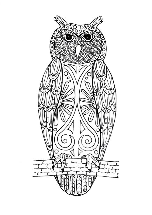 Hoo You Looking At Adult Coloring Page