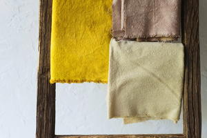 DIY Beet Dye for Fabric