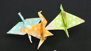 How to Make an Origami Crane Video
