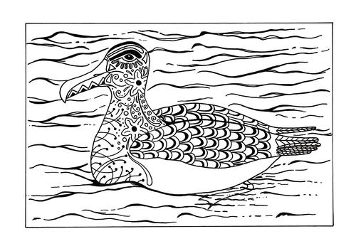 Arctic Albatross Adult Coloring Page