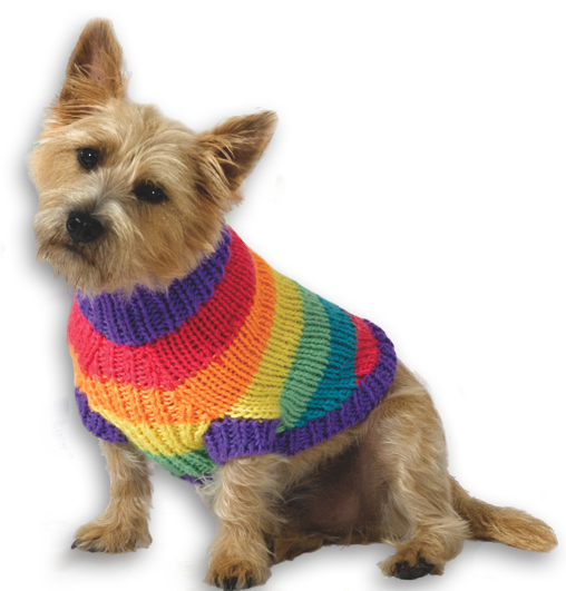 Free Knitted Dog Coat Patterns : Rainbow Dog Sweater Knitting Pattern from Caron Yarn FaveCrafts.com