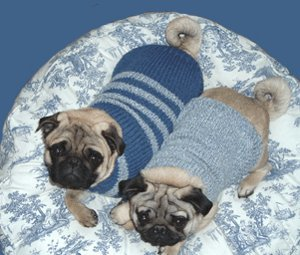 Cable knit greyhound sweater allfreeknitting even though the cable knit greyhound sweater was designed for greyhounds this is one of those free knitted dog sweater patterns that can easily be adjusted dt1010fo