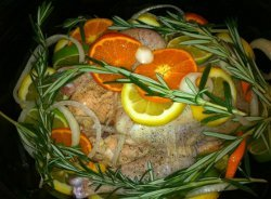 Taste Of Summer Citrus Chicken