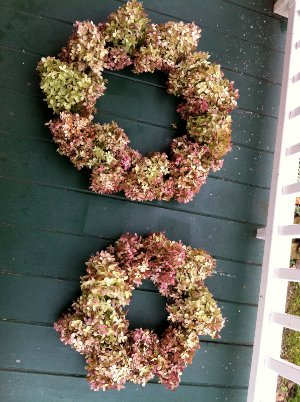 Dried Hydrangea Wreath